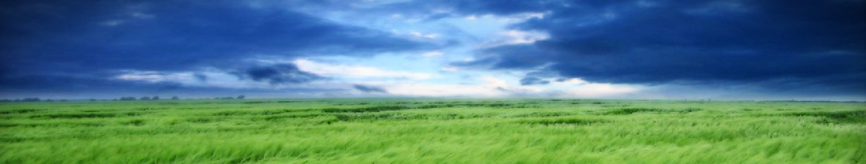 cropped-clouds-and-grass-header2.jpg